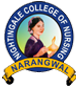 Nightingale Nursing College